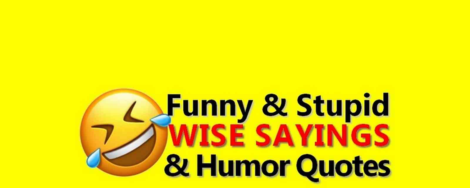 Funny Quotes Humor Sayings