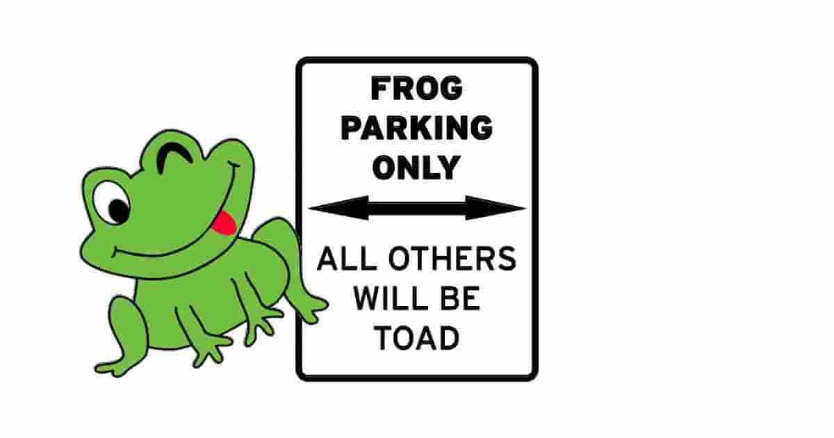 Frog humor funny quote