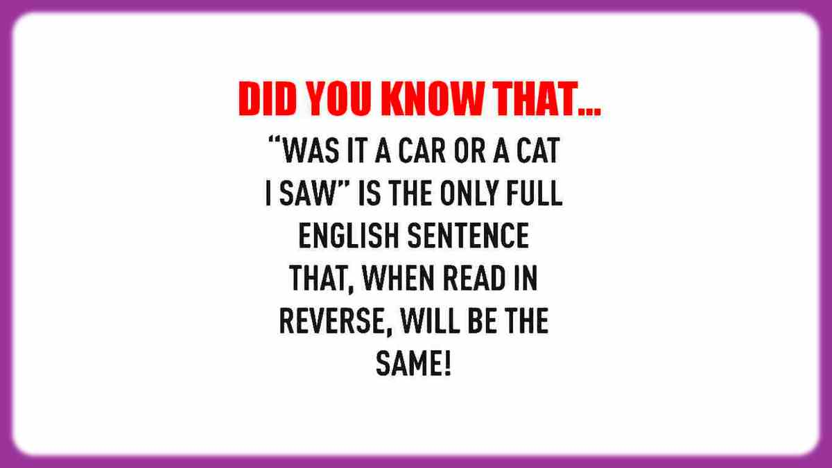 Funny grammar witty language twist. If you read this sentence in reverse, is spelled the same.