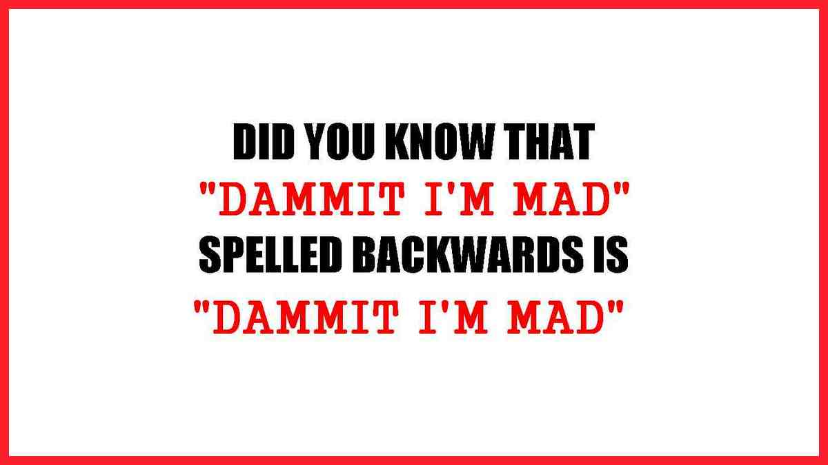 Did you know that if you spell DAMMIT I'M MAD backwards is DAMMIT I'M MAD?